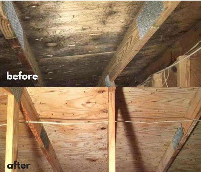 Mold Remediation in Attic Before