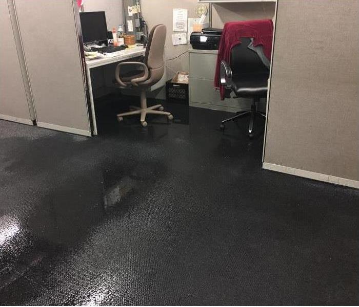 Commercial Water damage in a local Albany office over the weekend