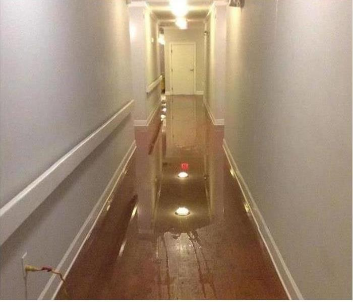 Commercial Apartment Water Damages