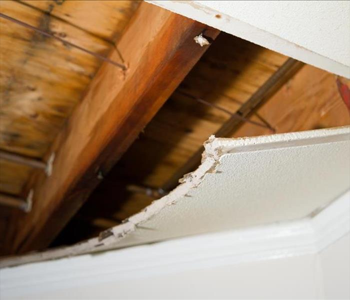 Water Damage Camilla Water Damage - Call the Pros to Alleviate Stress